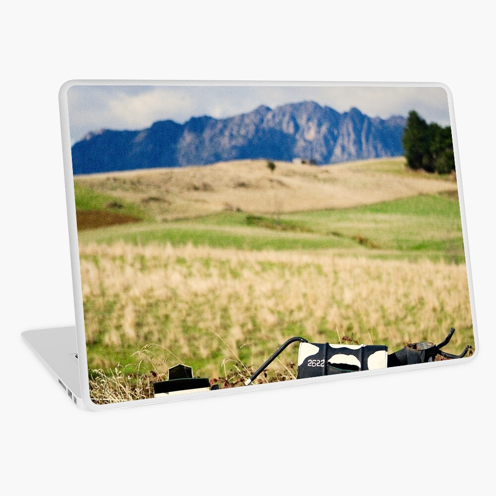 The letterboxes Laptop Skin