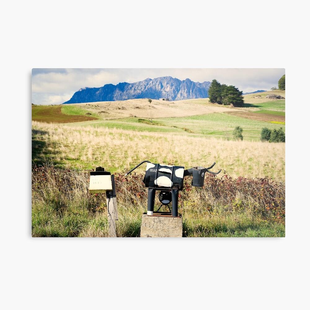 Wilmot letterboxes horizontal Metal Print