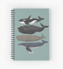 Cuaderno de espiral Gráfico de ballenas
