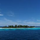 Kanapu Island II by Reef Ecoimages
