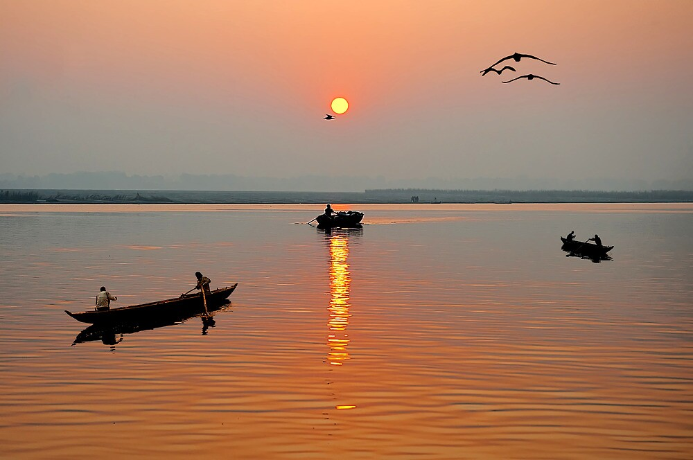 The Golden Morning by Mukesh Srivastava