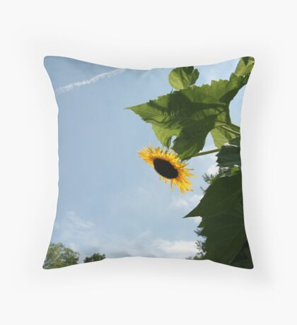 Skyscape with Sunflower Throw Pillow