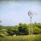 Texas Windmill by Colleen Drew