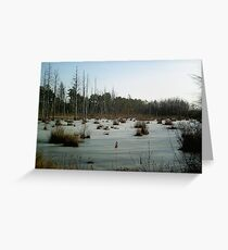 New jersey Bogs Greeting Card