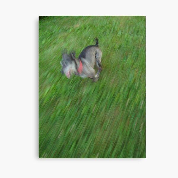 Run Girl, Run! Canvas Print
