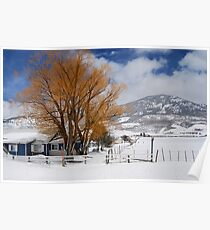 Outstanding in Orange - Snow Scene Poster