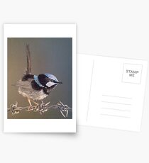 Terry's Cheeky Little Blue Wren Postcards