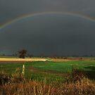 A Cranbrook Rainbow by Eve Parry