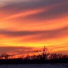 Sunset by Richard Skoropat