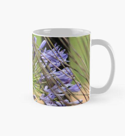 Agapanthus beauty Mug