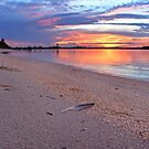feather beach by cliffordc1