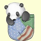 Pocket Panda by Katie Corrigan
