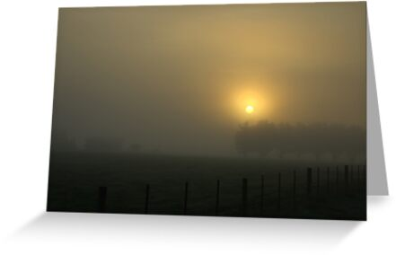 Foggy morning by Kerry  Hill