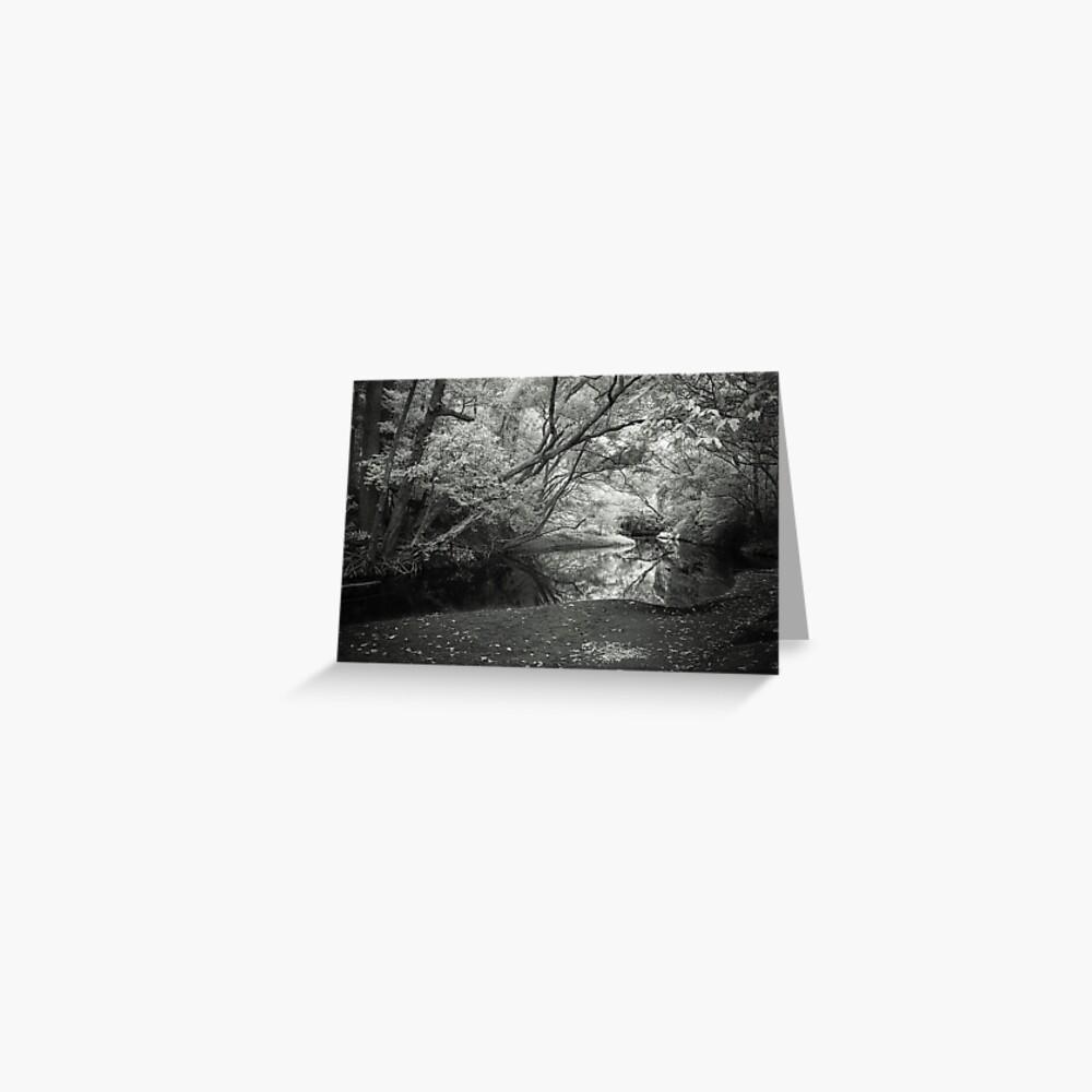 Reflecting infrared Greeting Card