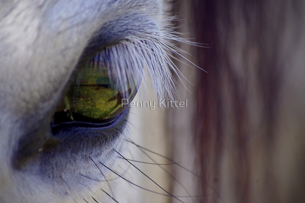 Silver and Green by Penny Kittel