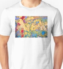 Paint in Valparaiso T-Shirt
