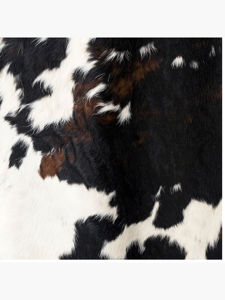 Cowhide Leather by cadinera