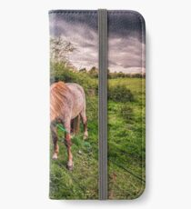 Two Horses Feeding iPhone Wallet/Case/Skin