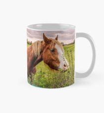 Two Horses Feeding In A Field Classic Mug
