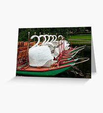 Swan Boats at Rest Greeting Card