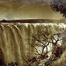 Victoria Falls by Sharon Bishop