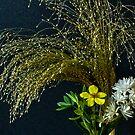 Tiny Flowers by Gilberte