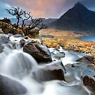 Tree and Tryfan by Jeanie