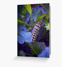 Blue Caterpillar Greeting Card