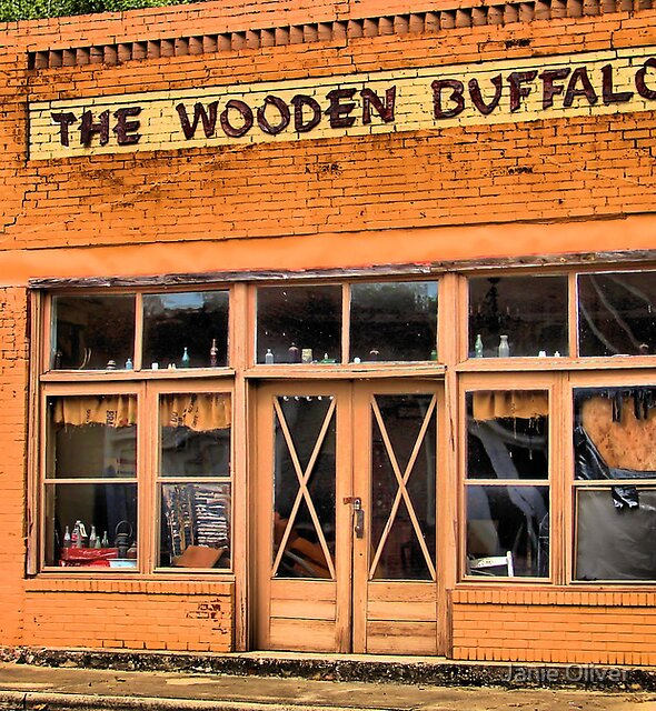 The Wooden Buffalo by Janie Oliver