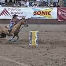 Barrel Racing 3 Pikes Peak or Bust Rodeo by hedgie6