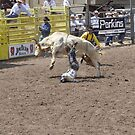 Bull Riding 8 Pikes Peak or Bust Rodeo by hedgie6