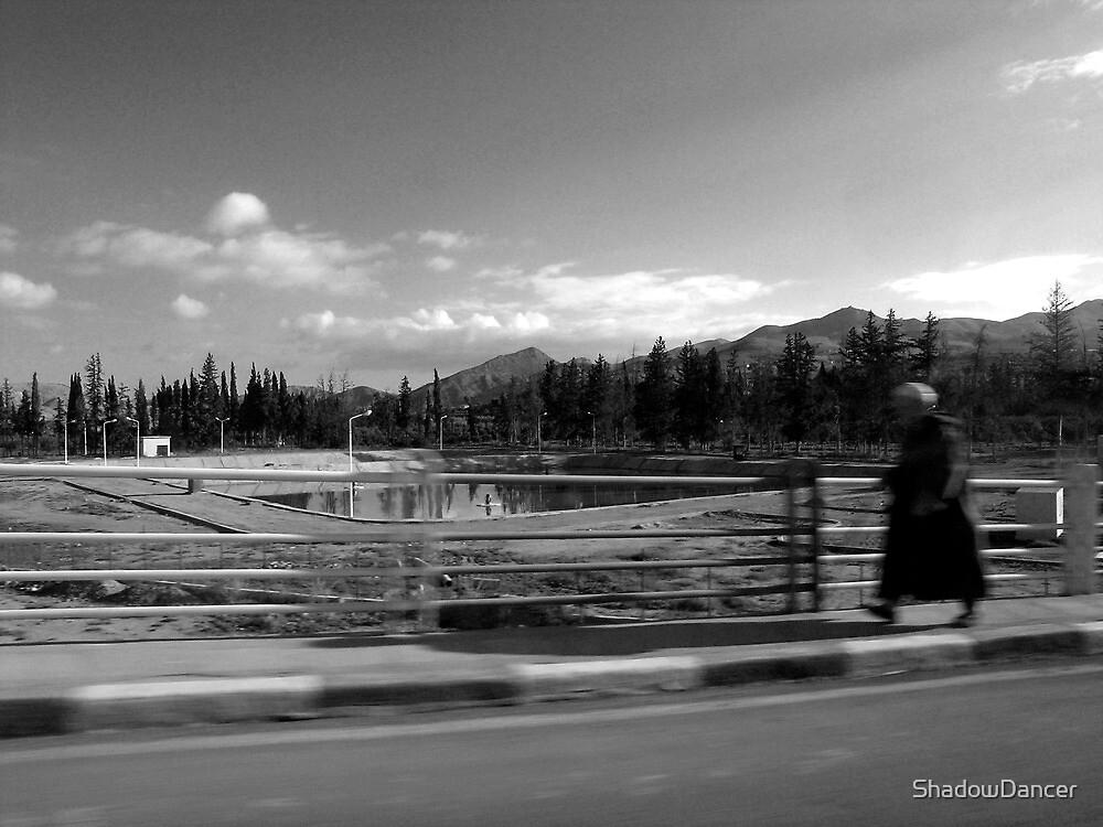 one man's walk to freedom by ShadowDancer