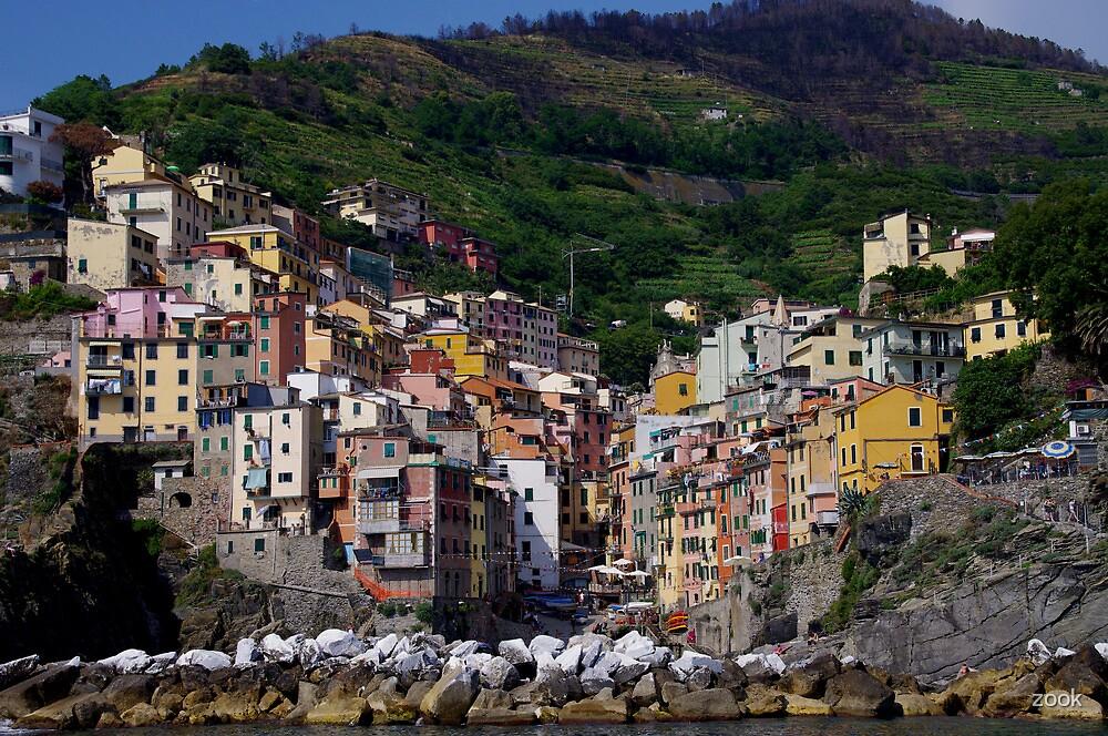 Riomaggiore by zook
