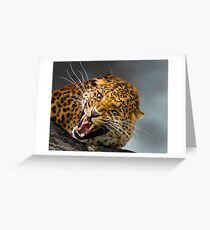 I don't think that you should come any closer!! Greeting Card
