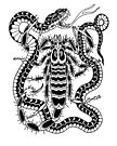 Scorpion Vs. Snake by johnreardontat2