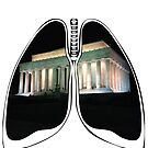 Lungs - Washington Monument by riskeybr