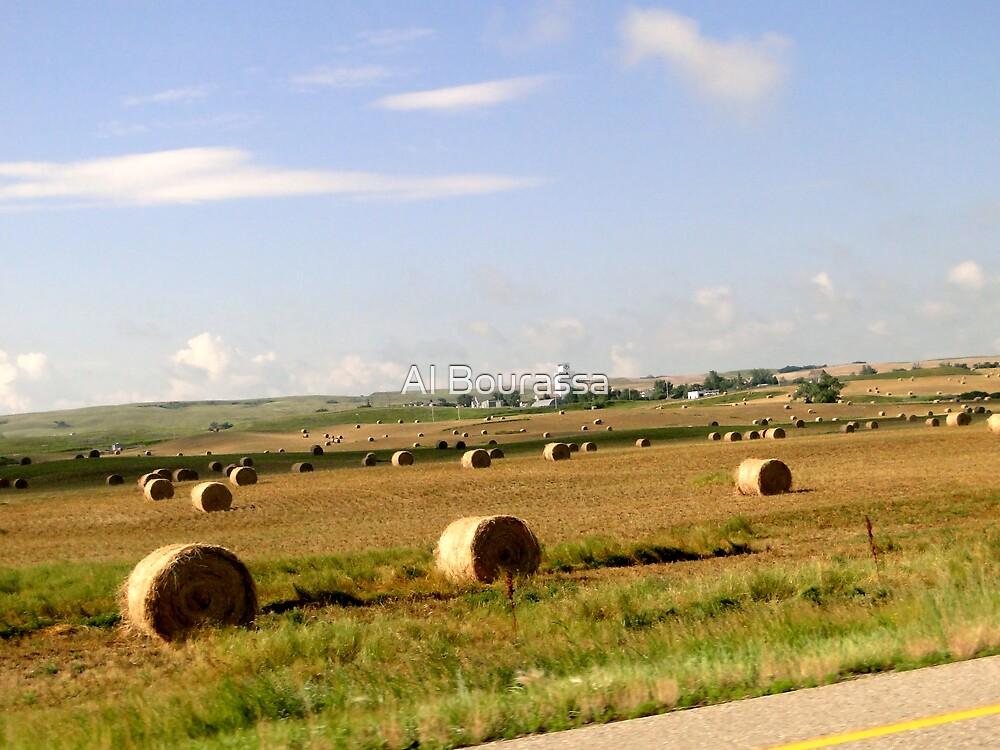 Saskatchewan Prairies by Al Bourassa