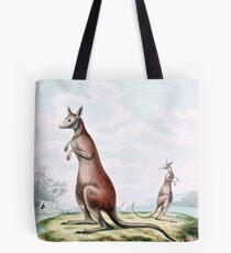 Kangaroos Vintage Drawing Tote Bag