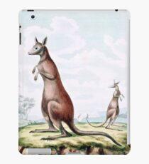 Kangaroos Vintage Drawing iPad Case/Skin