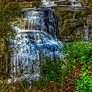 Agnes Falls #1 by Jason Green