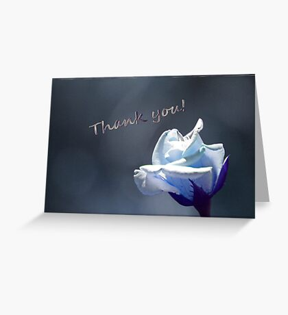 Thank You card with a Tinted Rose Greeting Card
