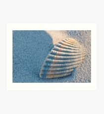 Shell Buried in Sand Art Print