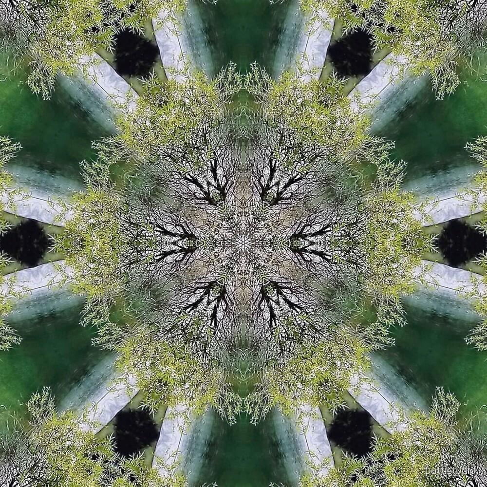 Green Kaleidoscope by pattistudio