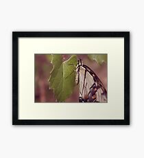 close Framed Print