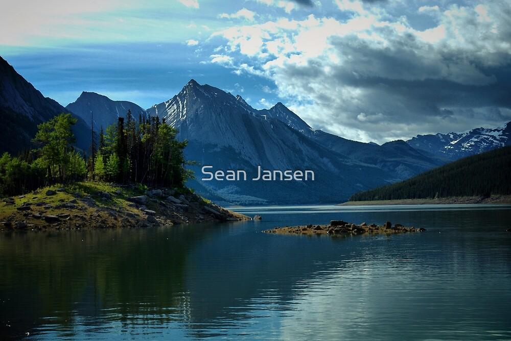 Healthy Medicine by Sean Jansen