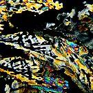 2010_2010-08-03-4827-Edit_RB by owensdp1277