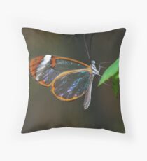"""Cellophane Wings"" Throw Pillow"