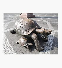 Tortoise Sculptures, Bordeaux, France 2012 Photographic Print