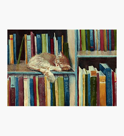 Quite Well Read Photographic Print