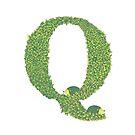 Alphabet Q - Hedgehog Colour  by Brett Miley